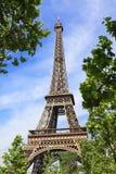Eiffeltorn i omfamningen av naturen Arkivfoton
