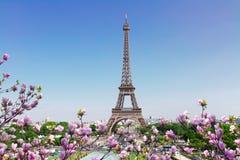 Eiffeltorn- och Paris cityscape arkivfoto