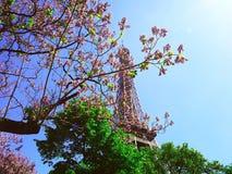 Eiffelturm auf einem Hintergrund von rosa Blumen, Magnolien, grüne Bäume Frühling in Paris Stockbild