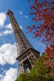 Eiffelturm durch Bäume Stockfotos