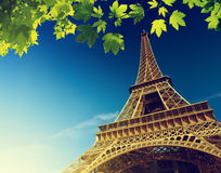 Eiffelturm im Sommer Stockfotos