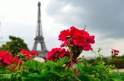 Eiffelturm Paris Frankreich Stockfotos