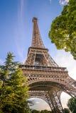 Eiffelturm unter den Bäumen Lizenzfreie Stockfotografie