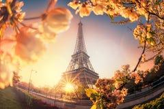 Eiffelturm während der Frühlingszeit in Paris, Frankreich lizenzfreies stockbild