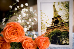 Eiffelturmkarte und -rosen Stockfotografie