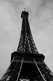 Eiffle tower by day in Black and white Royalty Free Stock Photos