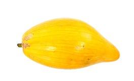 Eifrucht Stockfoto