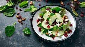 Eigengemaakt Autumn Apple Cranberry Salad met okkernoot, feta-kaas en groenten stock foto's
