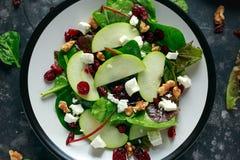 Eigengemaakt Autumn Apple Cranberry Salad met okkernoot, feta-kaas en groenten stock afbeeldingen