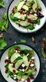 Eigengemaakt Autumn Apple Cranberry Salad met okkernoot, feta-kaas en groenten royalty-vrije stock foto