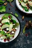 Eigengemaakt Autumn Apple Cranberry Salad met okkernoot, feta-kaas en groenten royalty-vrije stock foto's
