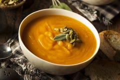 Eigengemaakt Autumn Butternut Squash Soup Royalty-vrije Stock Foto's