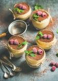 Eigengemaakt Italiaans dessert Tiramisu in glazen met munt en framboos stock foto's