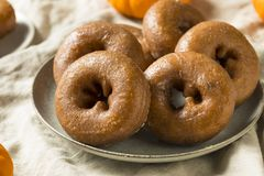 Eigengemaakt Pompoenkruid Donuts stock fotografie