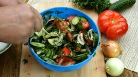 Eigengemaakt vegetarisch gezond voedsel De menselijke tomaten, de komkommers, de uien, de dille en de peterselie van de handenmen stock footage