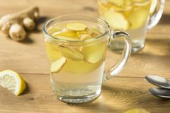 Eigengemaakt Vers Ginger Tea royalty-vrije stock fotografie