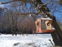 Eigengemaakt vogelhuis voor stadsvogels die op een boom dichtbij het rijtjeshuis hangen stock foto