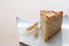 Eigengemaakte appel tarte - Plak royalty-vrije stock foto