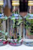 Eigengemaakte behandeling voor bosbessen Tint van bosbessen stock foto's