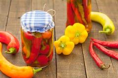 Eigengemaakte bewaarde groenten Stock Afbeelding