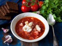 Eigengemaakte borscht Royalty-vrije Stock Foto