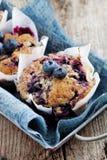 De muffins van de bosbes Stock Foto