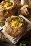 Eigengemaakte Broccoli en Cheddarsoep Stock Afbeeldingen