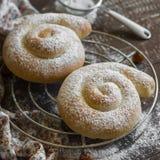 Eigengemaakte broodjes met kaneel en appelen Royalty-vrije Stock Foto