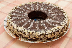 Eigengemaakte cake Royalty-vrije Stock Foto