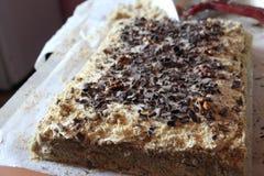 Eigengemaakte cake met noten Stock Afbeelding