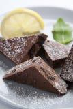 Eigengemaakte chocolade en citroen stock fotografie