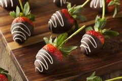 Eigengemaakte Chocolade Ondergedompelde Aardbeien Royalty-vrije Stock Afbeelding