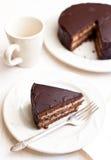 Eigengemaakte chocoladecake Stock Foto
