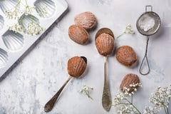 Eigengemaakte chocoladekoekjes Madeleine stock afbeelding