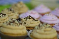 Eigengemaakte cupcakes Royalty-vrije Stock Foto's
