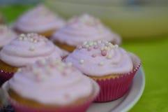 Eigengemaakte cupcakes Stock Foto