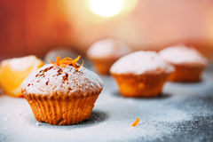 Eigengemaakte cupcakes met sinaasappelen Stock Foto