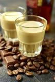 Eigengemaakte de roomalcoholische drank van de chocoladekoffie Stock Foto