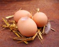 Eigengemaakte eieren in een stro Royalty-vrije Stock Fotografie