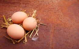 Eigengemaakte eieren in een stro Stock Fotografie