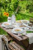 Eigengemaakte en gezonde die kippensoep in de tuin wordt gediend royalty-vrije stock afbeelding