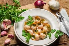 Eigengemaakte gebakken slakken met knoflook boter en verse kruiden Royalty-vrije Stock Foto