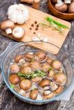 Eigengemaakte gemarineerde kastanjepaddestoel met kruiden Stock Foto