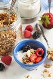 Eigengemaakte granola met bes en yoghurt stock fotografie