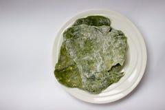 Eigengemaakte groene spinazie flatbread Royalty-vrije Stock Foto
