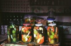 Eigengemaakte groenten in het zuur Stock Afbeelding