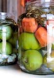 Eigengemaakte groenten in het zuur Stock Foto