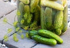 Eigengemaakte groenten in het zuur Stock Fotografie