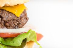 Eigengemaakte Hamburger en Frieten royalty-vrije stock afbeelding