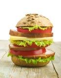 Eigengemaakte hamburger met verse groenten Royalty-vrije Stock Foto's